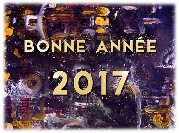 Bonne année 2017 - Siger Bzh